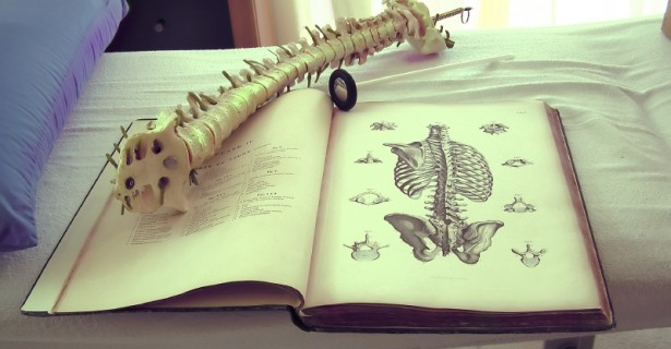 Spine-and-Book-615x320